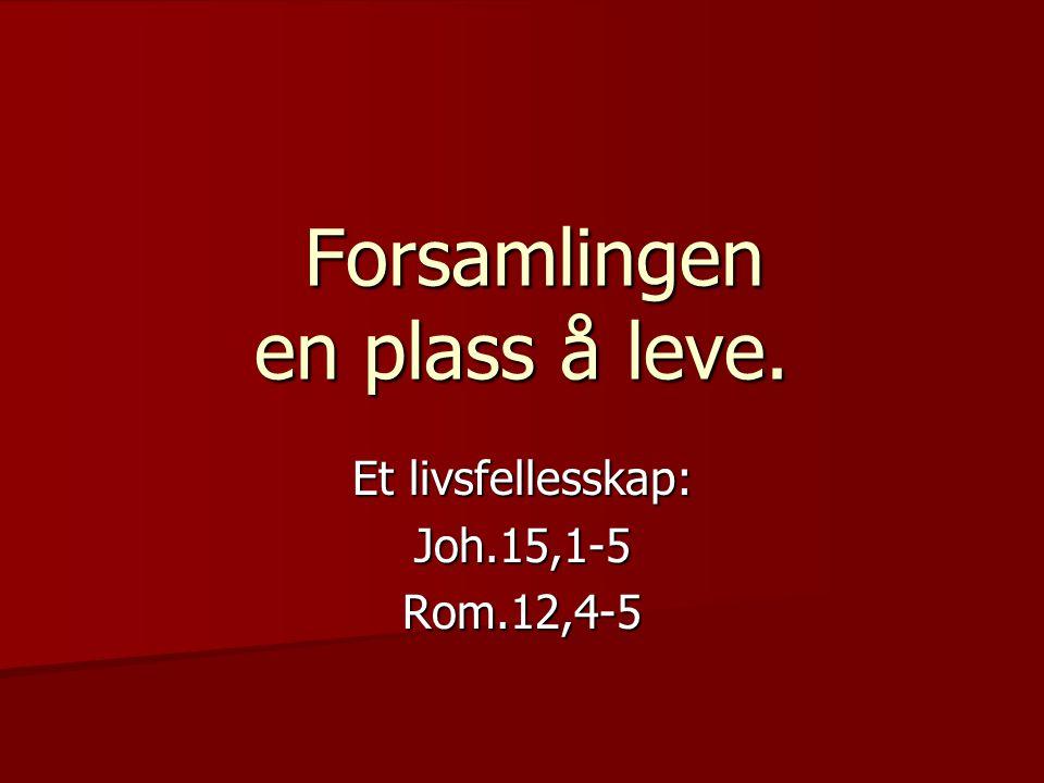 Forsamlingen en plass å leve. Forsamlingen en plass å leve. Et livsfellesskap: Joh.15,1-5Rom.12,4-5