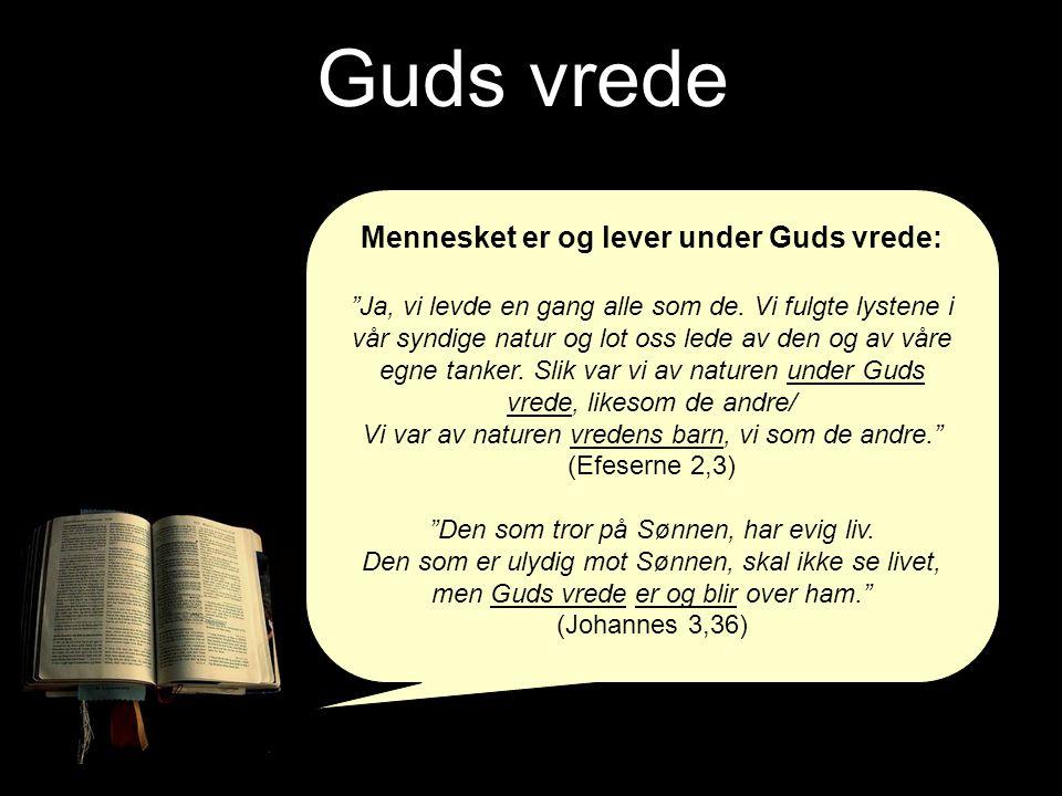 """Guds vrede Mennesket er og lever under Guds vrede: """"Ja, vi levde en gang alle som de. Vi fulgte lystene i vår syndige natur og lot oss lede av den og"""