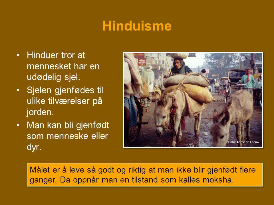 Hinduisme •Hinduer tror at mennesket har en udødelig sjel. •Sjelen gjenfødes til ulike tilværelser på jorden. •Man kan bli gjenfødt som menneske eller