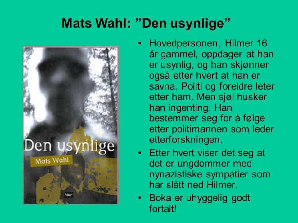 Mats Wahl: Den usynlige •Hovedpersonen, Hilmer 16 år gammel, oppdager at han er usynlig, og han skjønner også etter hvert at han er savna.