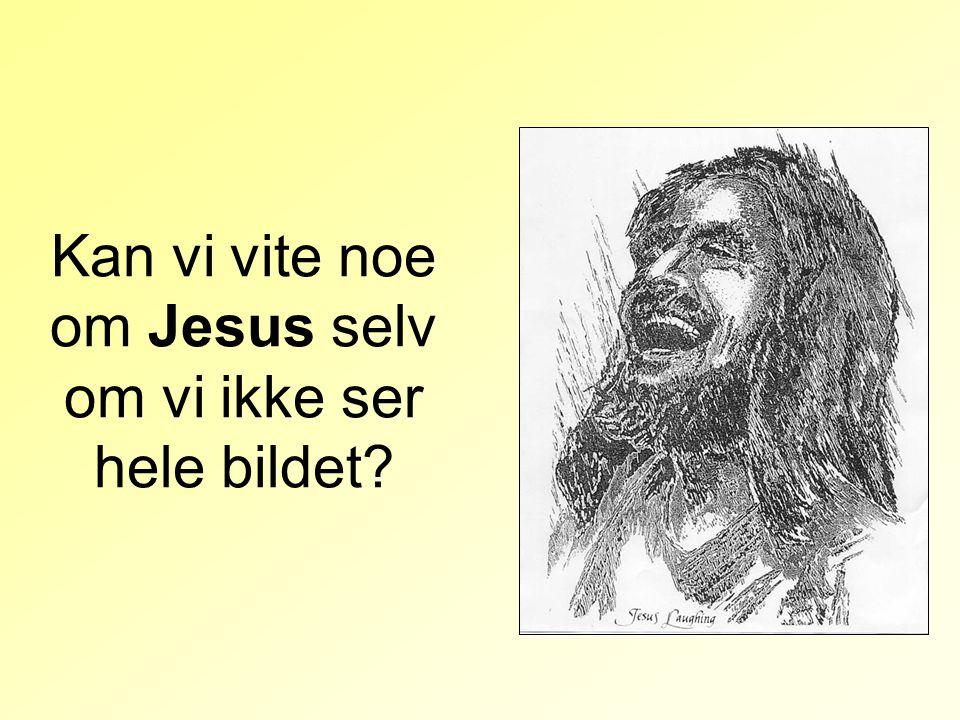 Kan vi vite noe om Jesus selv om vi ikke ser hele bildet?