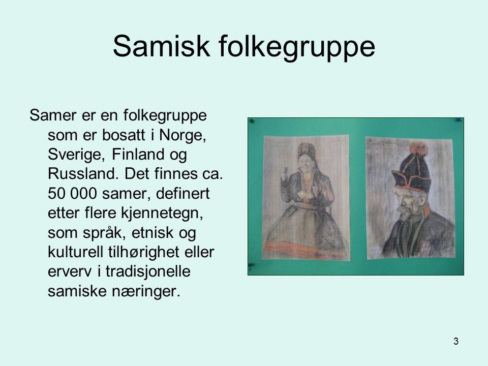 3 Samer er en folkegruppe som er bosatt i Norge, Sverige, Finland og Russland. Det finnes ca. 50 000 samer, definert etter flere kjennetegn, som språk