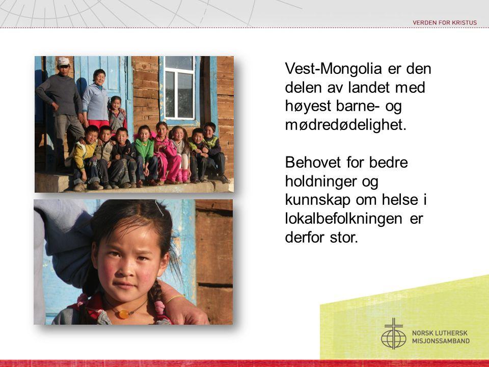 Vest-Mongolia er den delen av landet med høyest barne- og mødredødelighet.