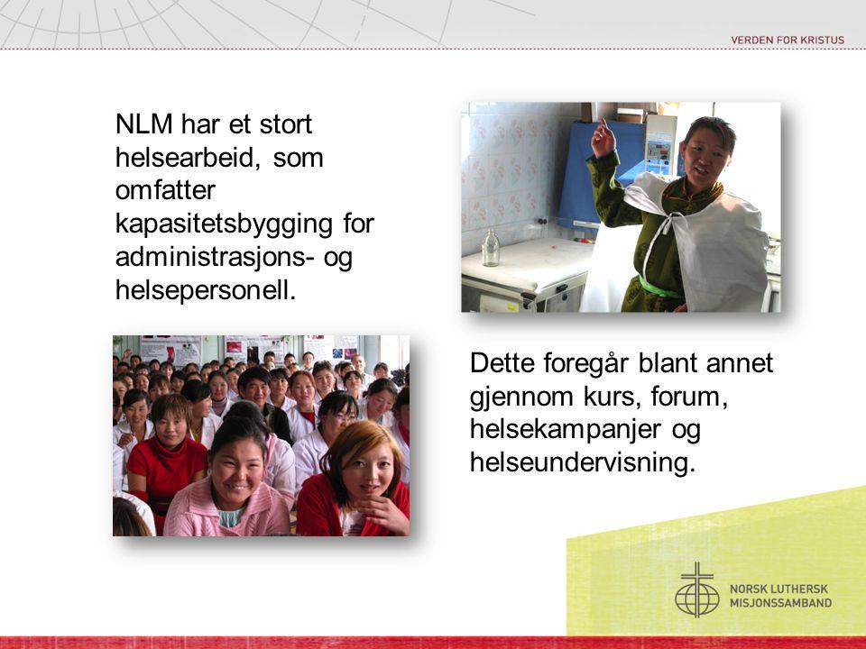 NLM har et stort helsearbeid, som omfatter kapasitetsbygging for administrasjons- og helsepersonell.