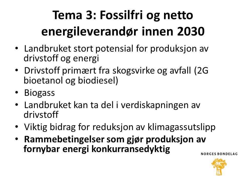 Tema 3: Fossilfri og netto energileverandør innen 2030 • Landbruket stort potensial for produksjon av drivstoff og energi • Drivstoff primært fra skogsvirke og avfall (2G bioetanol og biodiesel) • Biogass • Landbruket kan ta del i verdiskapningen av drivstoff • Viktig bidrag for reduksjon av klimagassutslipp • Rammebetingelser som gjør produksjon av fornybar energi konkurransedyktig