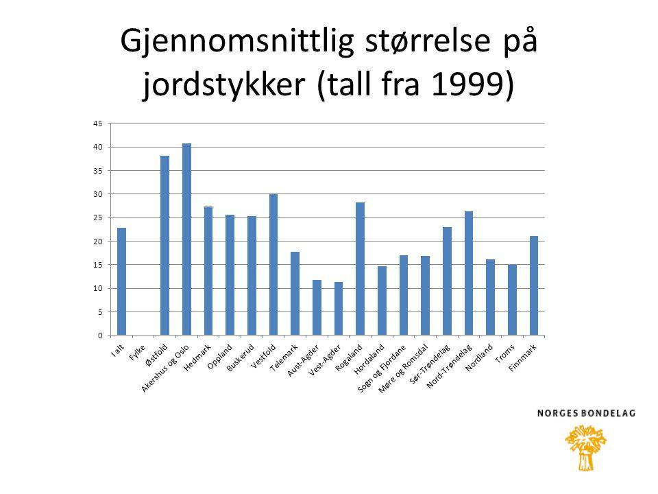 Gjennomsnittlig størrelse på jordstykker (tall fra 1999)