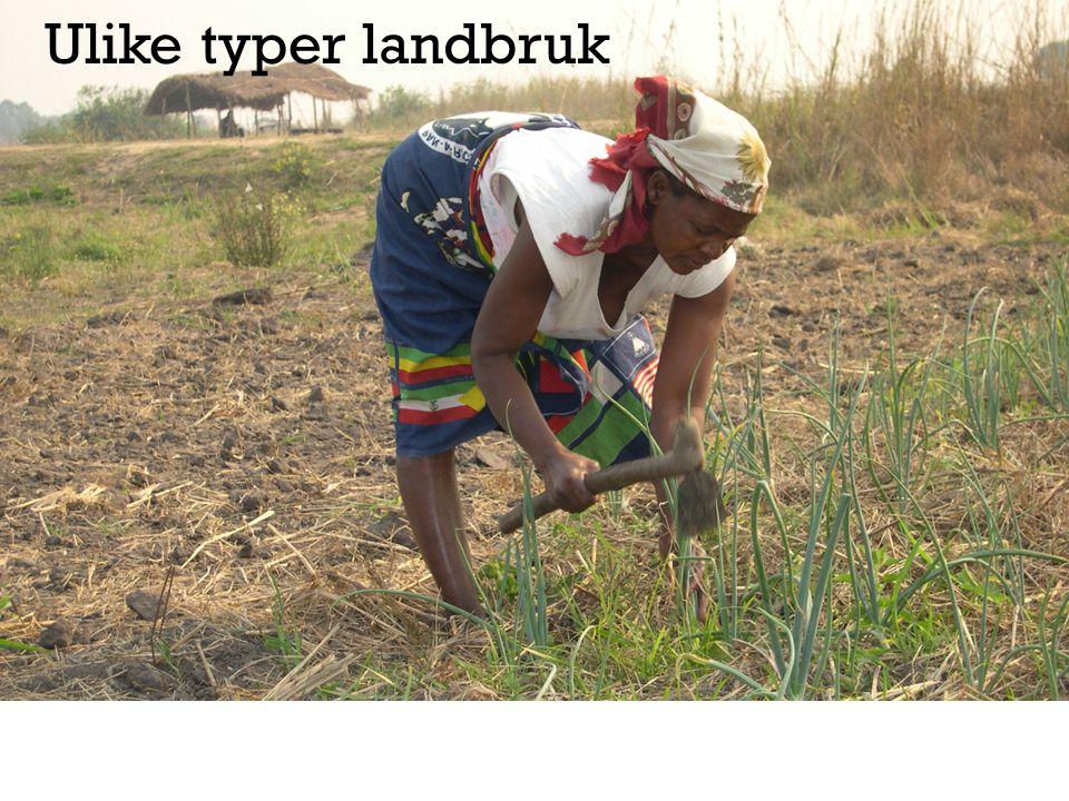 Ulike typer landbruk