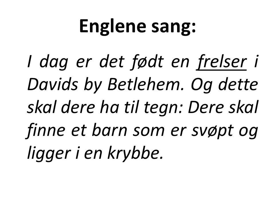 Englene sang: I dag er det født en frelser i Davids by Betlehem. Og dette skal dere ha til tegn: Dere skal finne et barn som er svøpt og ligger i en k