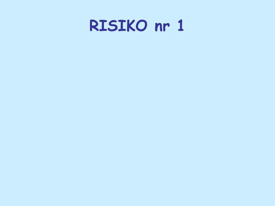 RISIKO nr 1