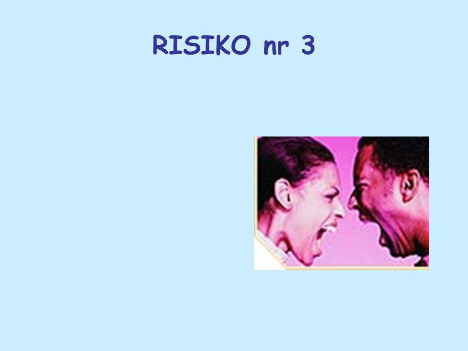 RISIKO nr 3