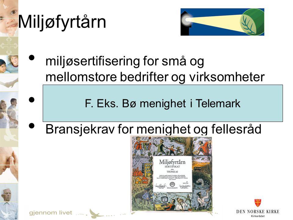 Miljøfyrtårn • miljøsertifisering for små og mellomstore bedrifter og virksomheter • Mer enn 1000 sertifisert pr. 2007 • Bransjekrav for menighet og f