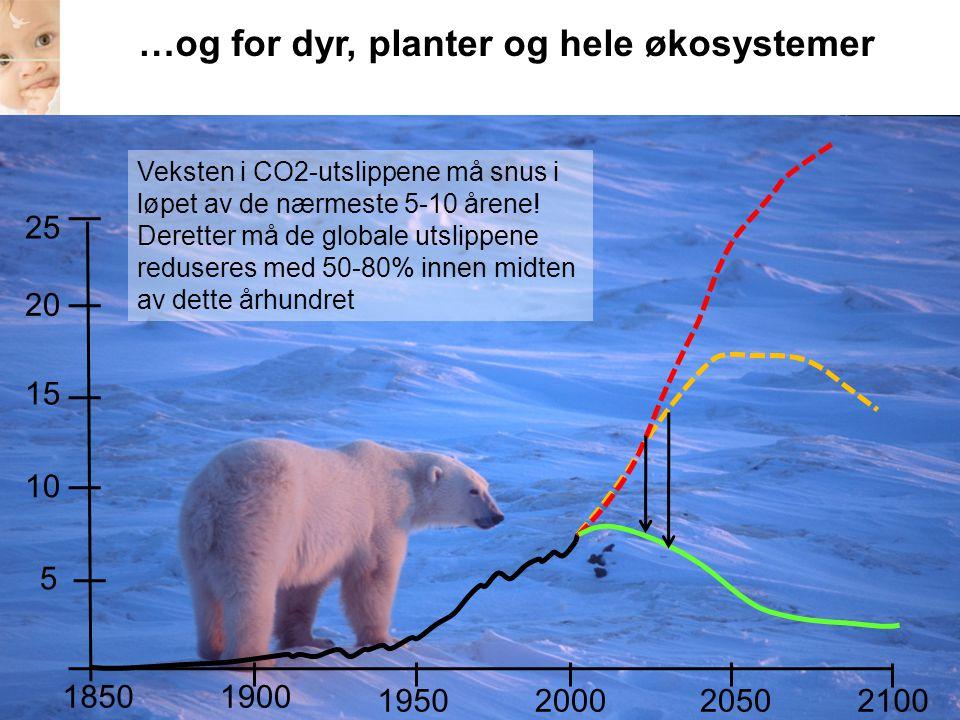 21002050 1850 20001950 1900 5 10 15 20 25 …og for dyr, planter og hele økosystemer Veksten i CO2-utslippene må snus i løpet av de nærmeste 5-10 årene!