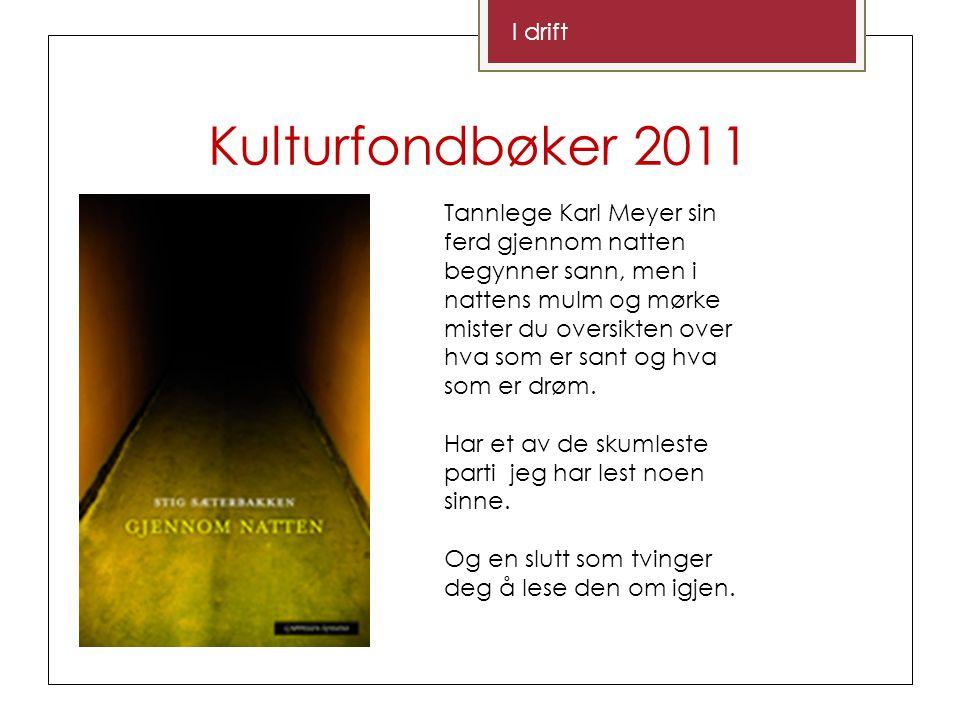 Kulturfondbøker 2011 I drift Tannlege Karl Meyer sin ferd gjennom natten begynner sann, men i nattens mulm og mørke mister du oversikten over hva som er sant og hva som er drøm.
