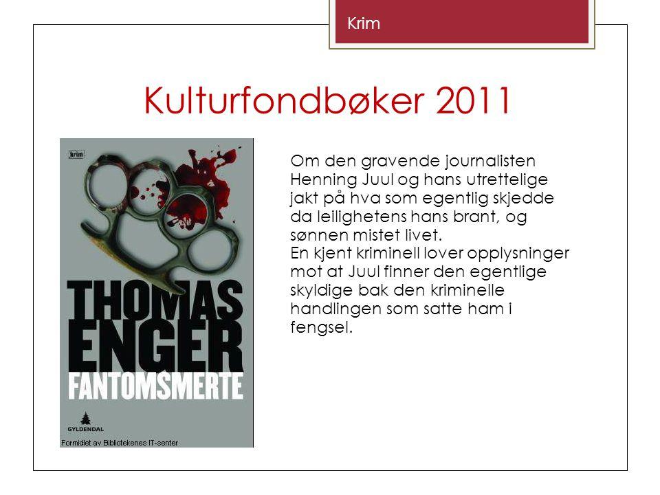 Kulturfondbøker 2011 Krim Om den gravende journalisten Henning Juul og hans utrettelige jakt på hva som egentlig skjedde da leilighetens hans brant, og sønnen mistet livet.