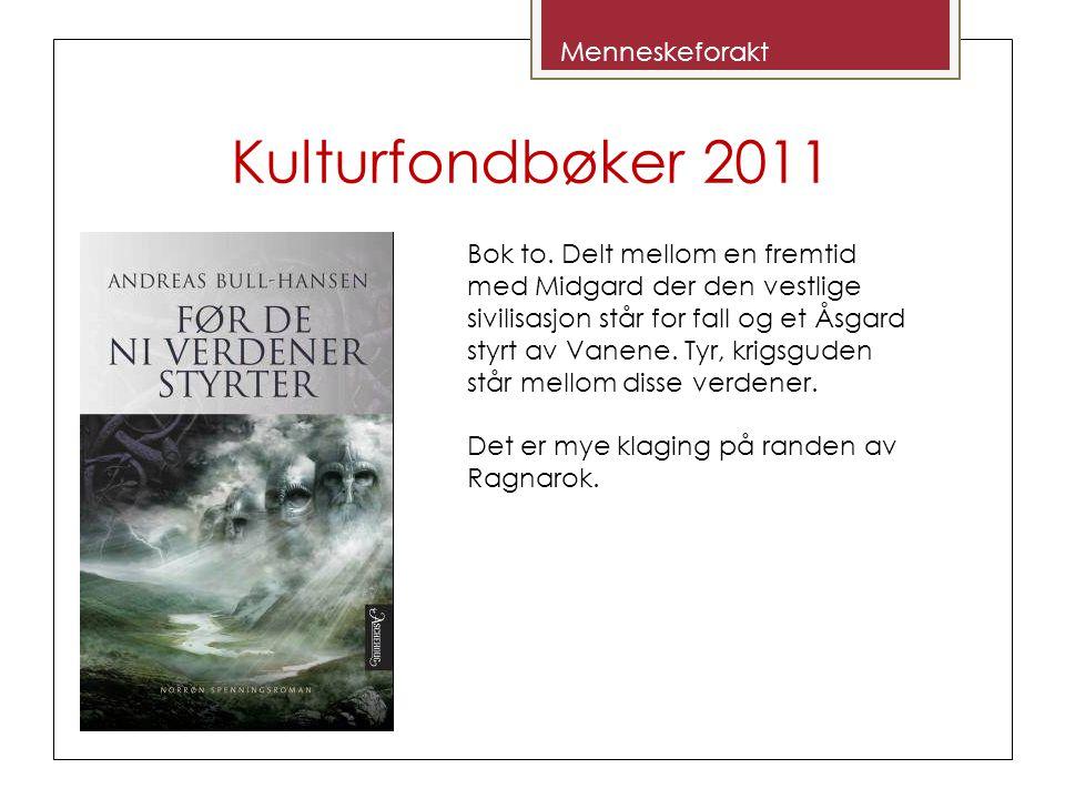 Kulturfondbøker 2011 Bok to. Delt mellom en fremtid med Midgard der den vestlige sivilisasjon står for fall og et Åsgard styrt av Vanene. Tyr, krigsgu