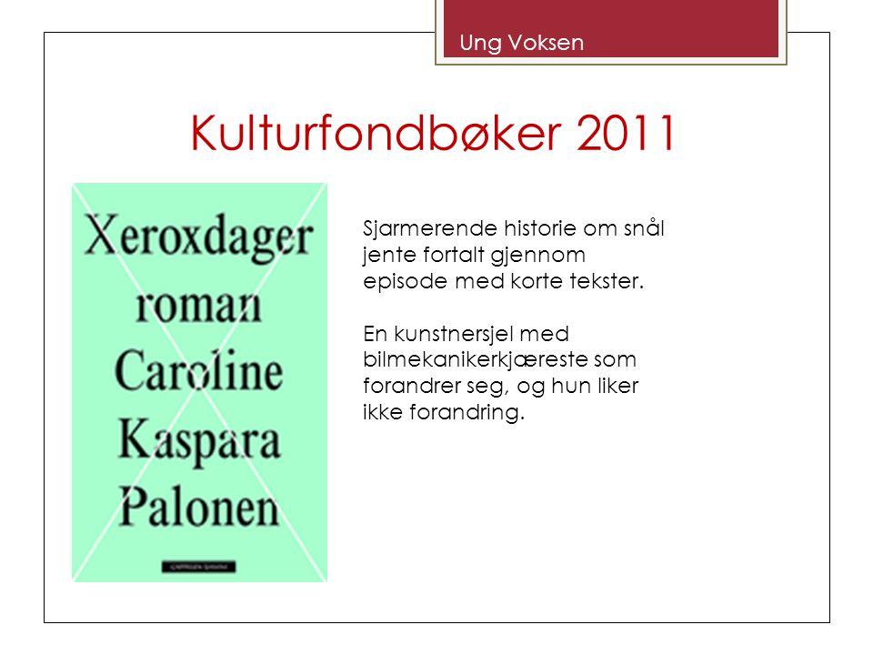 Kulturfondbøker 2011 Ung Voksen Sjarmerende historie om snål jente fortalt gjennom episode med korte tekster. En kunstnersjel med bilmekanikerkjæreste