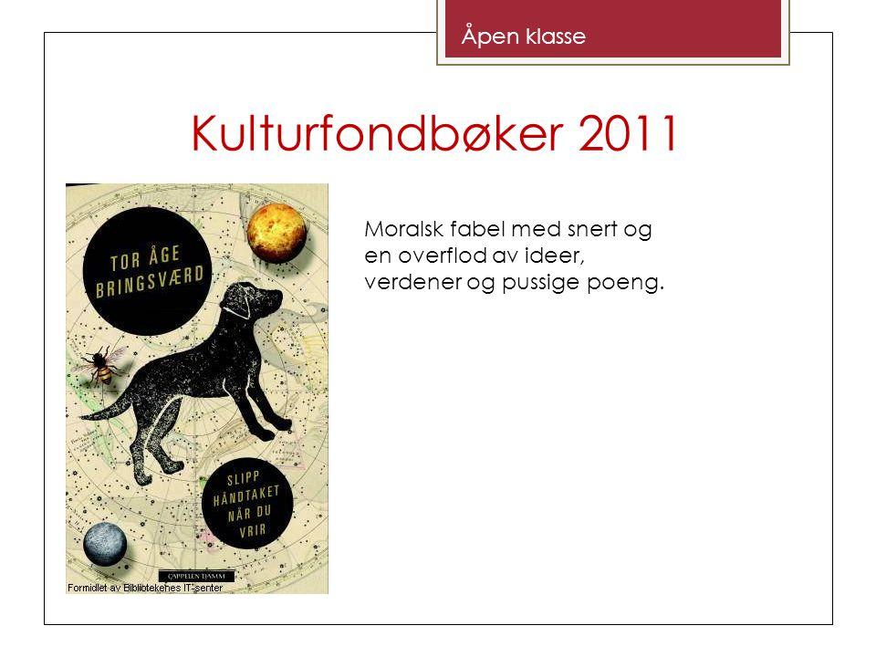 Kulturfondbøker 2011 Åpen klasse Moralsk fabel med snert og en overflod av ideer, verdener og pussige poeng.