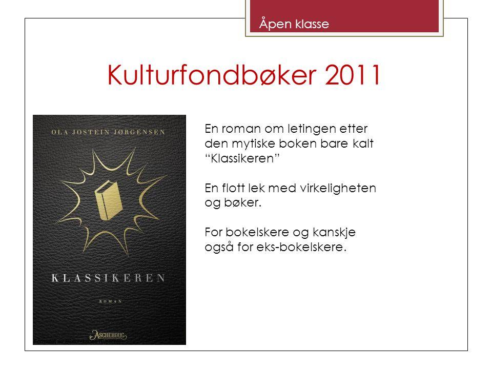 Kulturfondbøker 2011 Åpen klasse En roman om letingen etter den mytiske boken bare kalt Klassikeren En flott lek med virkeligheten og bøker.