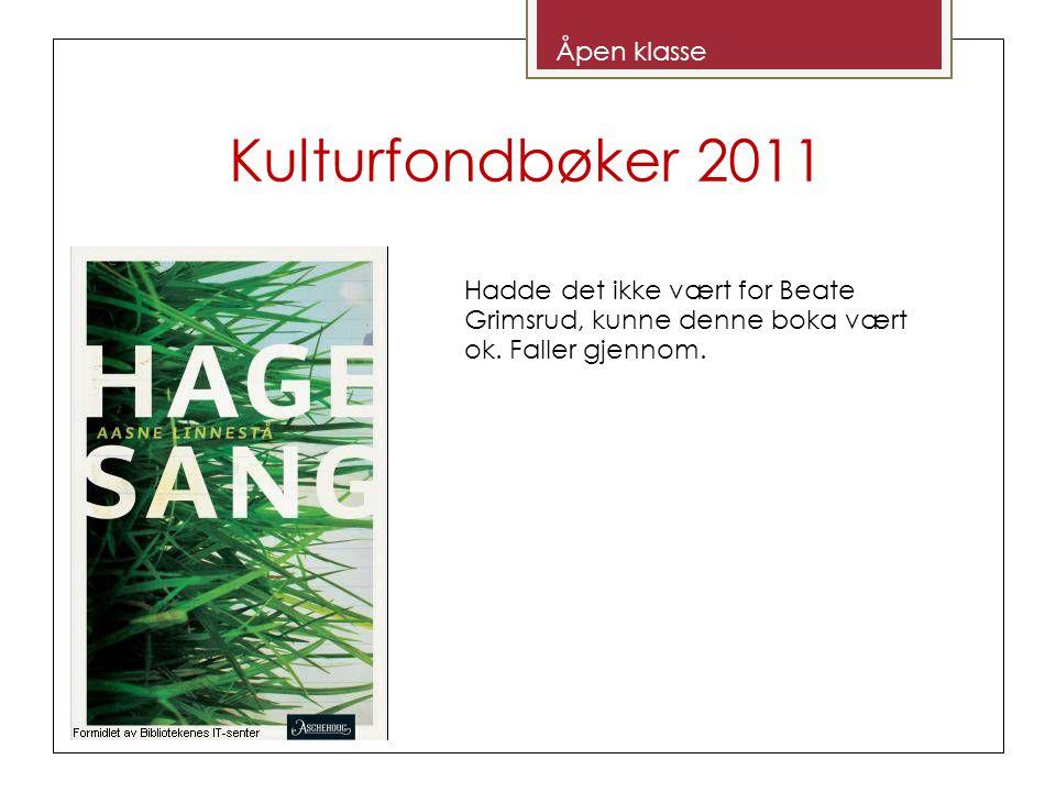 Kulturfondbøker 2011 Åpen klasse Hadde det ikke vært for Beate Grimsrud, kunne denne boka vært ok.