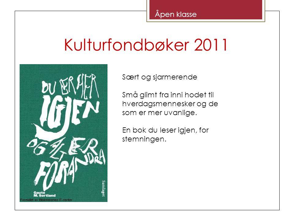Kulturfondbøker 2011 Åpen klasse Sært og sjarmerende Små glimt fra inni hodet til hverdagsmennesker og de som er mer uvanlige.