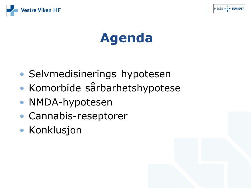 Agenda •Selvmedisinerings hypotesen •Komorbide sårbarhetshypotese •NMDA-hypotesen •Cannabis-reseptorer •Konklusjon