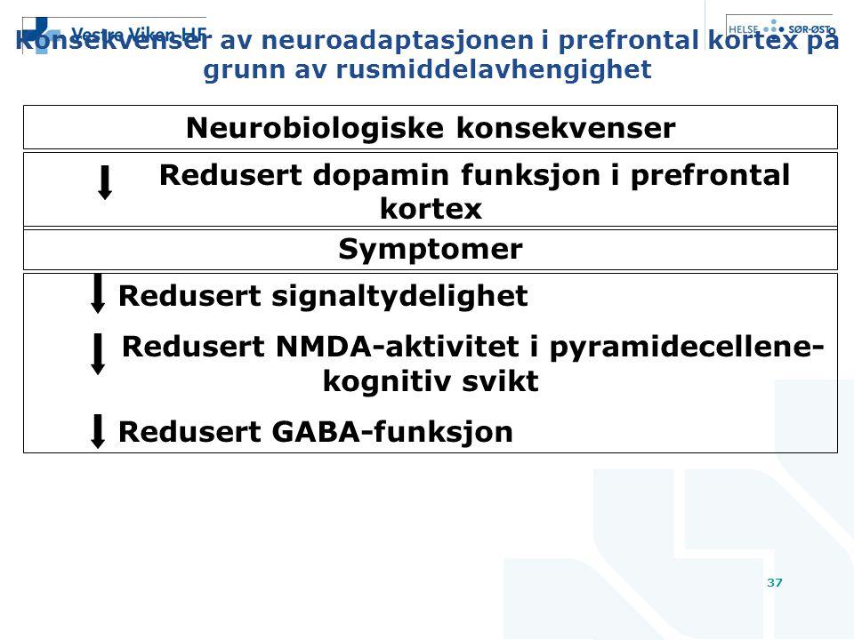 37 Konsekvenser av neuroadaptasjonen i prefrontal kortex på grunn av rusmiddelavhengighet Redusert dopamin funksjon i prefrontal kortex Symptomer Redusert signaltydelighet Redusert NMDA-aktivitet i pyramidecellene- kognitiv svikt Redusert GABA-funksjon Neurobiologiske konsekvenser