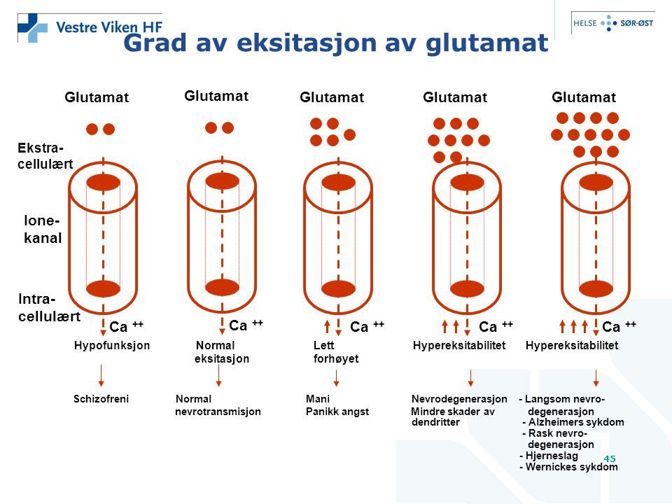 45 Grad av eksitasjon av glutamat Glutamat Ca ++ Ekstra- cellulært Ione- kanal Schizofreni Normal Mani Nevrodegenerasjon - Langsom nevro- nevrotransmisjon Panikk angst Mindre skader av degenerasjon dendritter - Alzheimers sykdom - Rask nevro- degenerasjon - Hjerneslag - Wernickes sykdom Intra- cellulært Hypofunksjon Normal Lett Hypereksitabilitet Hypereksitabilitet eksitasjon forhøyet Glutamat Ca ++ Glutamat Ca ++ Glutamat Ca ++ Glutamat Ca ++