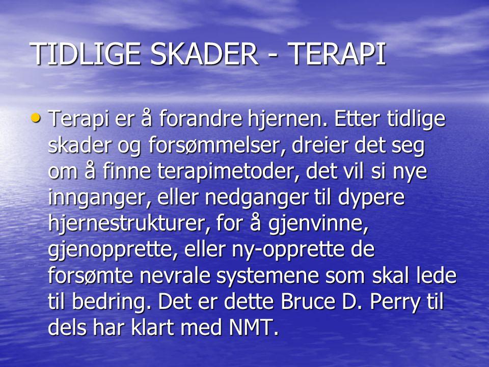 TIDLIGE SKADER - TERAPI • Terapi er å forandre hjernen.