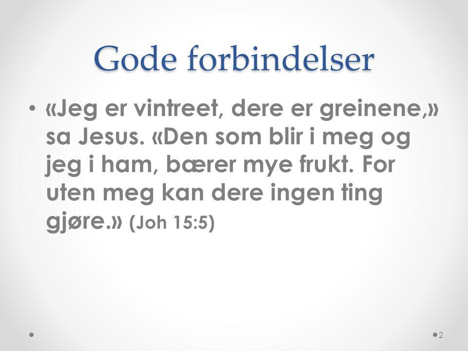 Gode forbindelser • «Jeg er vintreet, dere er greinene,» sa Jesus. «Den som blir i meg og jeg i ham, bærer mye frukt. For uten meg kan dere ingen ting
