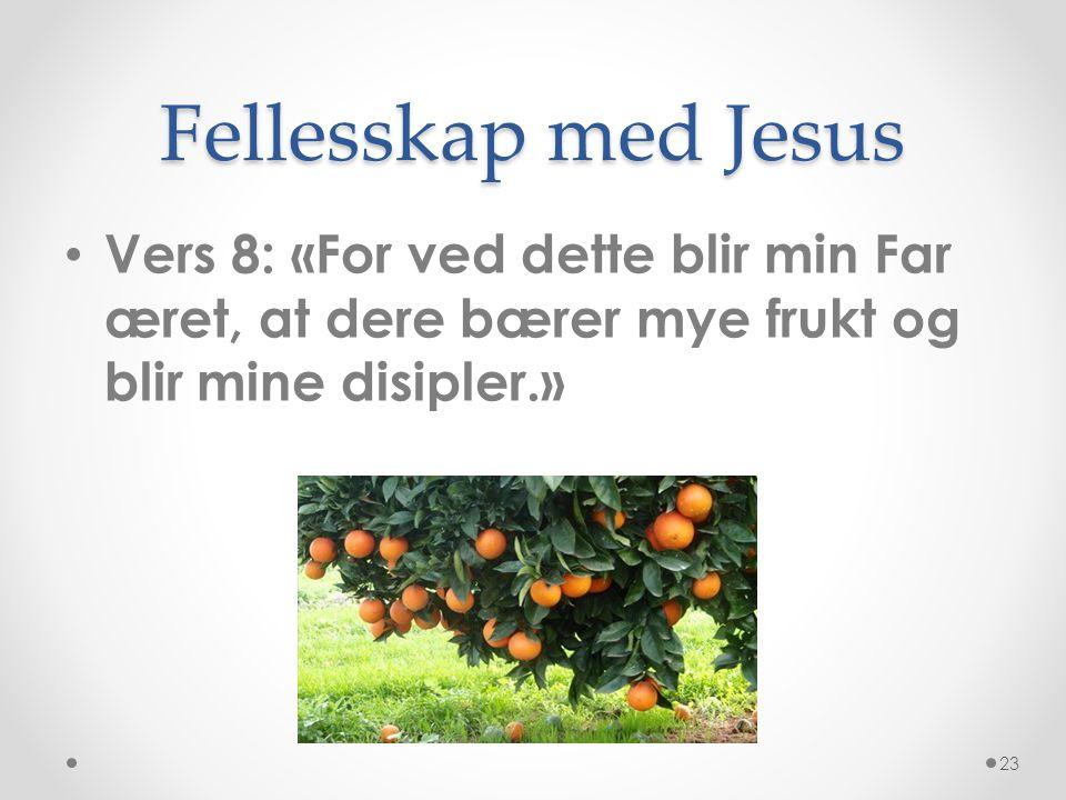 Fellesskap med Jesus • Vers 8: «For ved dette blir min Far æret, at dere bærer mye frukt og blir mine disipler.» 23