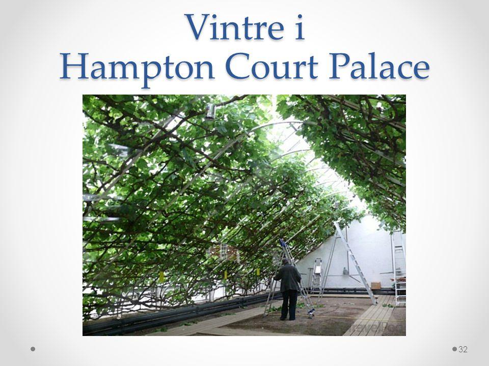 Vintre i Hampton Court Palace 32
