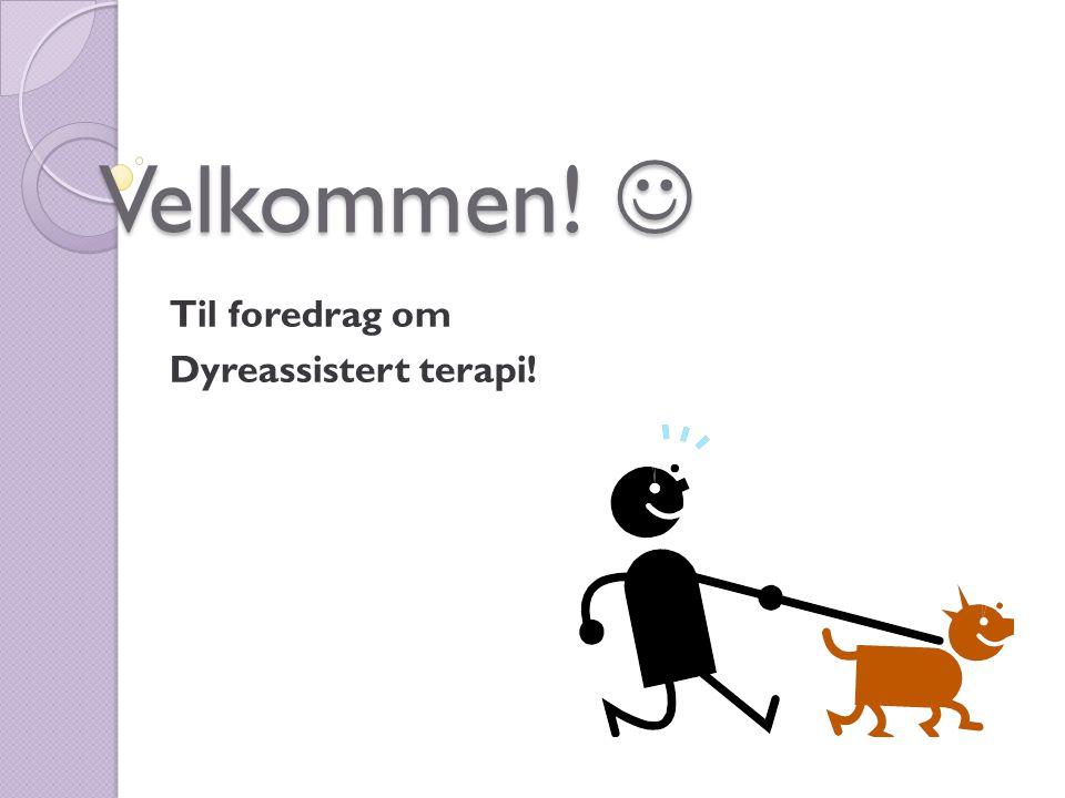 Velkommen!  Til foredrag om Dyreassistert terapi!