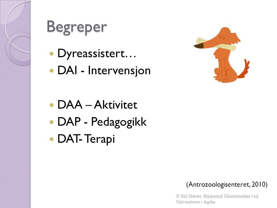 Begreper  Dyreassistert…  DAI - Intervensjon  DAA – Aktivitet  DAP - Pedagogikk  DAT- Terapi (Antrozoologisenteret, 2010) © Siri-Merete Skjøresta