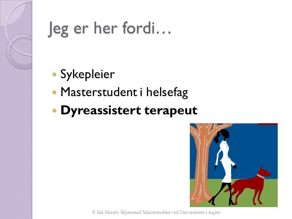 Se for øvrig kompendium…  Myren (2010)  Johansson og Andersson (2005)  Morrison (2007)  Sellers (2005)  Ormerod (2005)  Edwards og Beck (2002)  Skjørestad (2010) (upubl.)