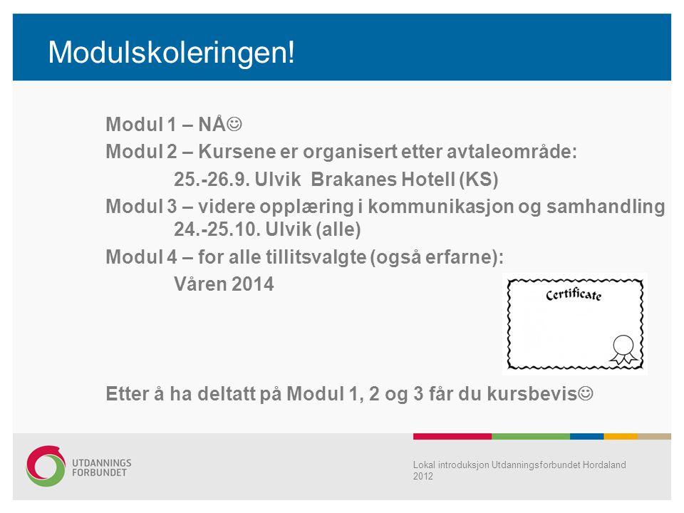Modulskoleringen! Modul 1 – NÅ  Modul 2 – Kursene er organisert etter avtaleområde: 25.-26.9. Ulvik Brakanes Hotell (KS) Modul 3 – videre opplæring i