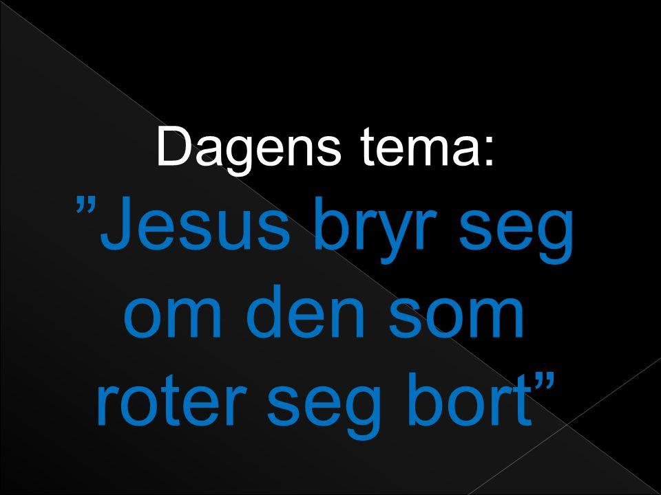 Dagens tema: Jesus bryr seg om den som roter seg bort
