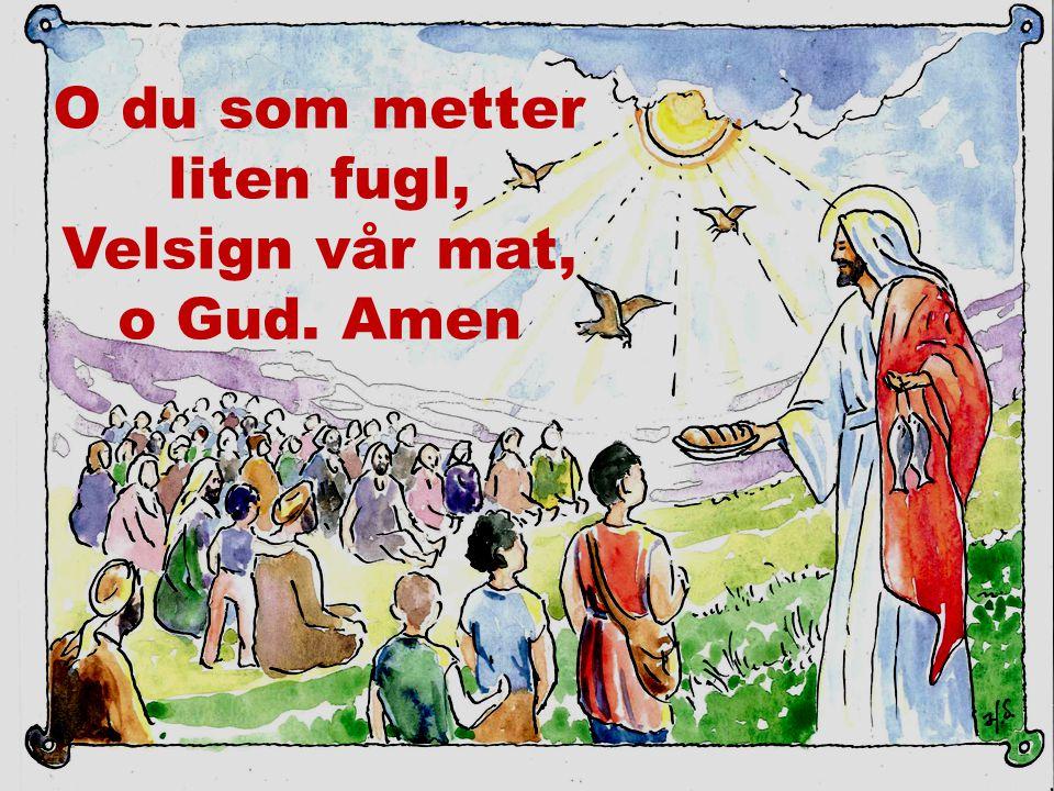 O du som metter liten fugl, Velsign vår mat, o Gud. Amen