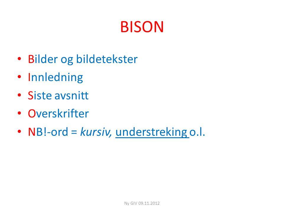 BISON • Bilder og bildetekster • Innledning • Siste avsnitt • Overskrifter • NB!-ord = kursiv, understreking o.l.