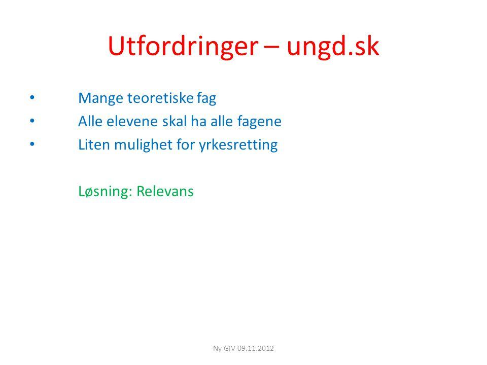 Utfordringer – ungd.sk • Mange teoretiske fag • Alle elevene skal ha alle fagene • Liten mulighet for yrkesretting Løsning: Relevans Ny GIV 09.11.2012