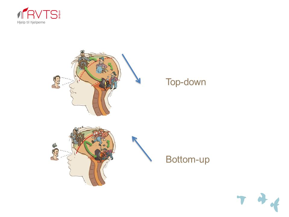 Top-down Bottom-up