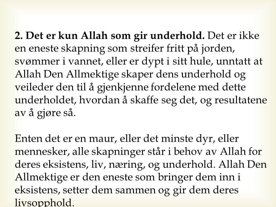 2. Det er kun Allah som gir underhold. Det er ikke en eneste skapning som streifer fritt på jorden, svømmer i vannet, eller er dypt i sitt hule, unnta