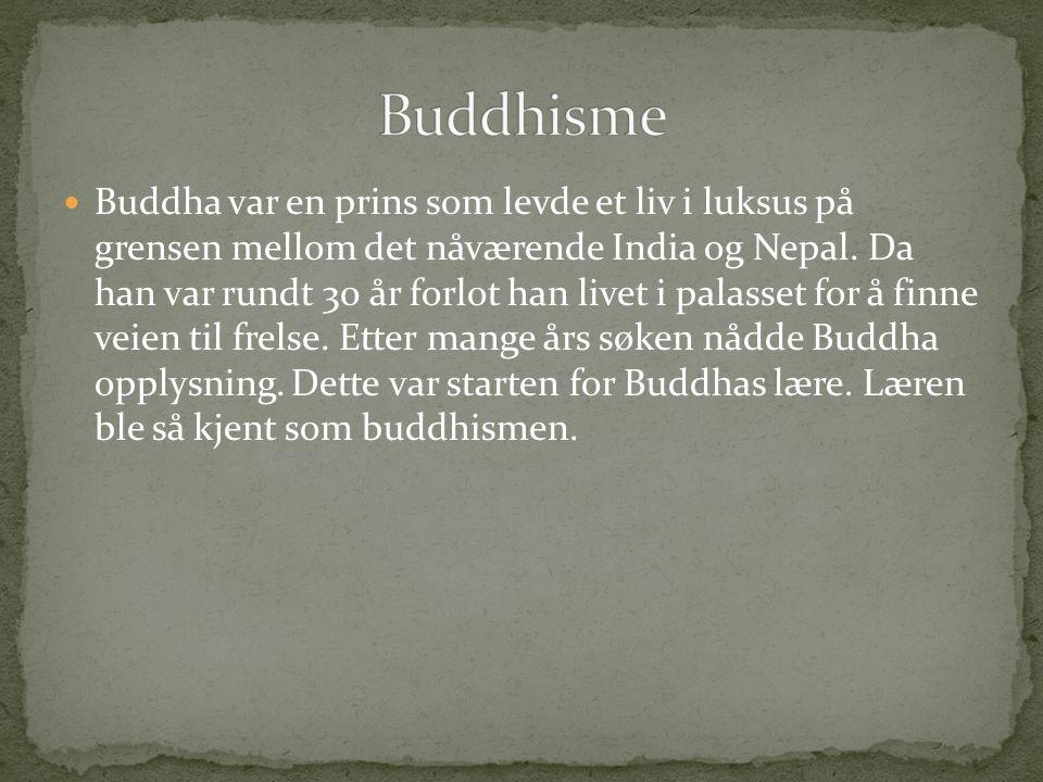  Buddha var en prins som levde et liv i luksus på grensen mellom det nåværende India og Nepal.