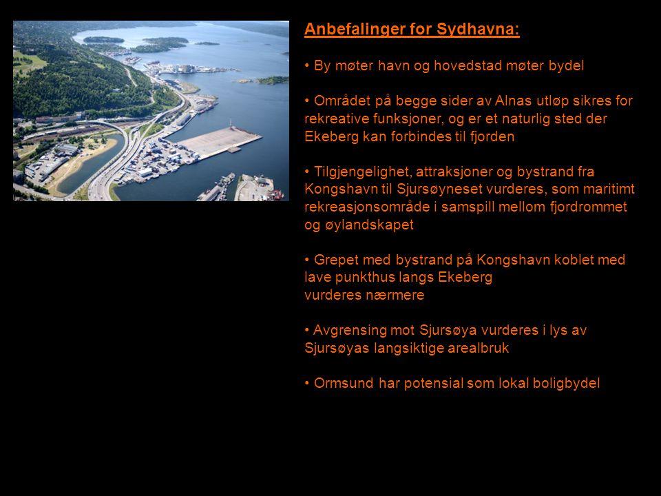 Anbefalinger for Sydhavna: • By møter havn og hovedstad møter bydel • Området på begge sider av Alnas utløp sikres for rekreative funksjoner, og er et