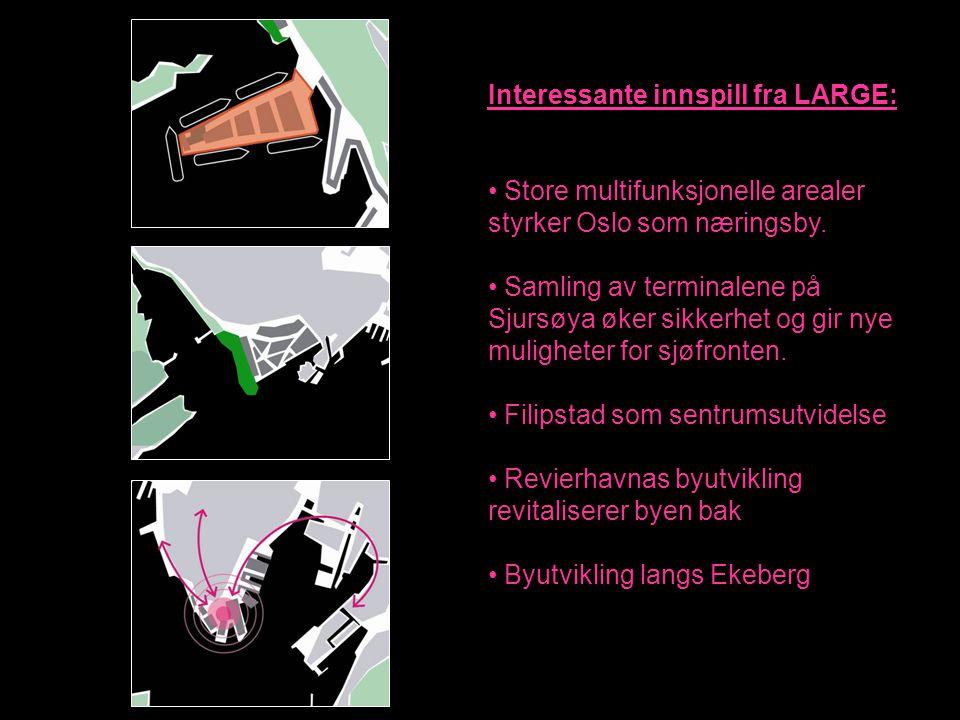 PBEs anbefaling på bakgrunn av fremtidsbildene: Oslo Park: Hvordan lage arenaer for bredt spekter av aktiviteter.