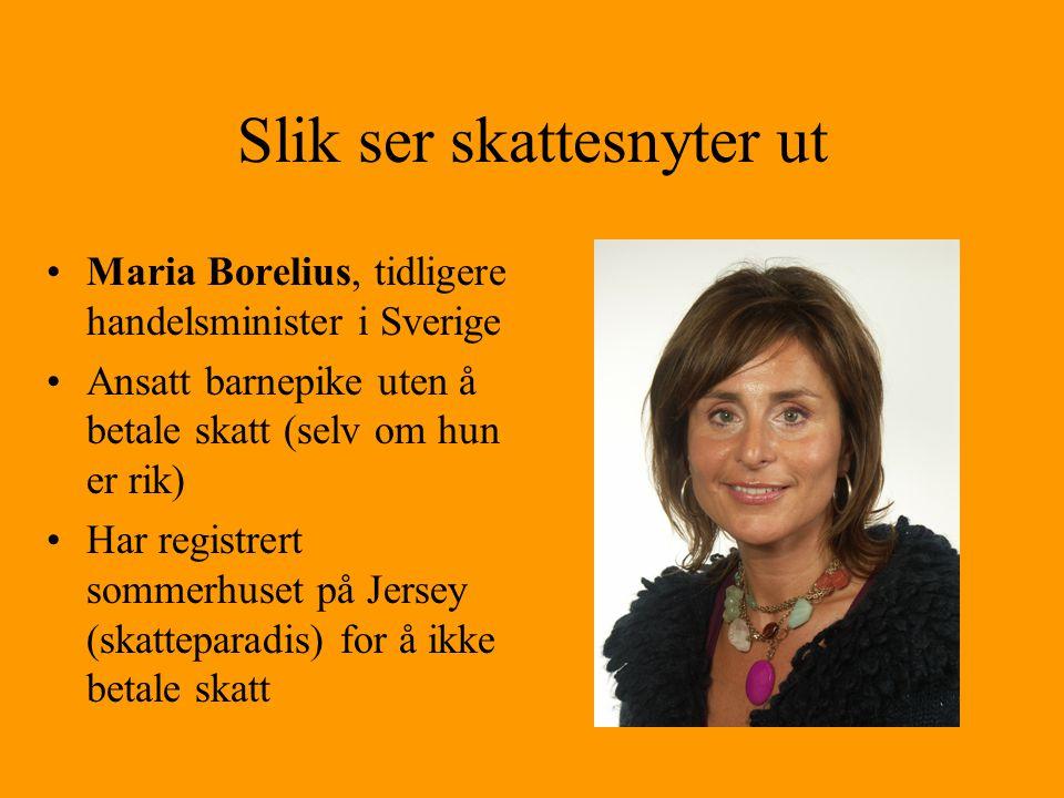 Slik ser skattesnyter ut •Maria Borelius, tidligere handelsminister i Sverige •Ansatt barnepike uten å betale skatt (selv om hun er rik) •Har registre