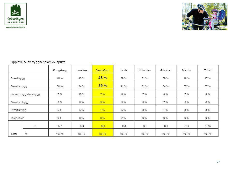 27 Opplevelse av trygghet blant de spurte KongsbergHønefossSandefjordLarvikNotoddenGrimstadMandalTotalt Svært trygg45 %40 % 48 % 39 %51 %55 %48 %47 % Ganske trygg38 %34 % 39 % 41 %31 %34 %37 % Verken trygg eller utrygg7 %15 %7 %8 %7 %4 %7 %8 % Ganske utrygg5 %6 %5 % 8 %7 %5 %6 % Svært utrygg5 % 1 %5 %3 %1 %3 % Ikke sikker0 % 2 %0 % Total N177128164153951812481146 %100 %