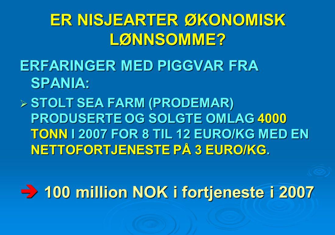 ERFARINGER MED PIGGVAR FRA SPANIA:  STOLT SEA FARM (PRODEMAR) PRODUSERTE OG SOLGTE OMLAG 4000 TONN I 2007 FOR 8 TIL 12 EURO/KG MED EN NETTOFORTJENEST