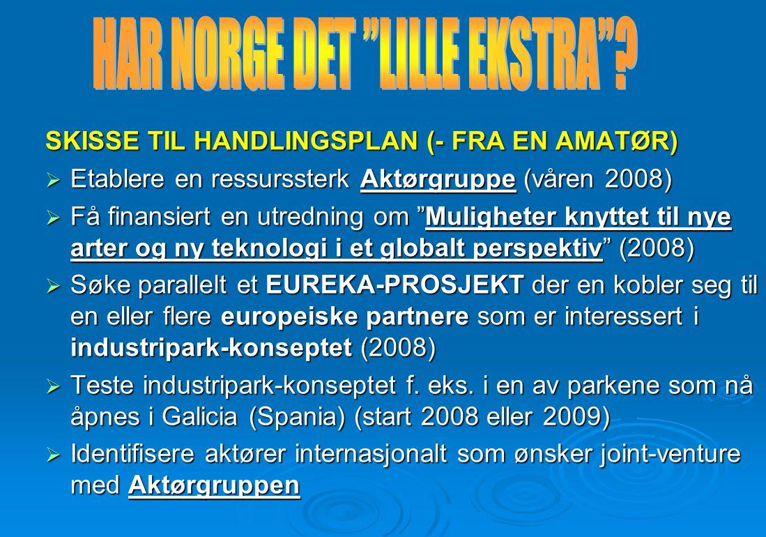 """SKISSE TIL HANDLINGSPLAN (- FRA EN AMATØR)  Etablere en ressurssterk Aktørgruppe (våren 2008)  Få finansiert en utredning om """"Muligheter knyttet til"""