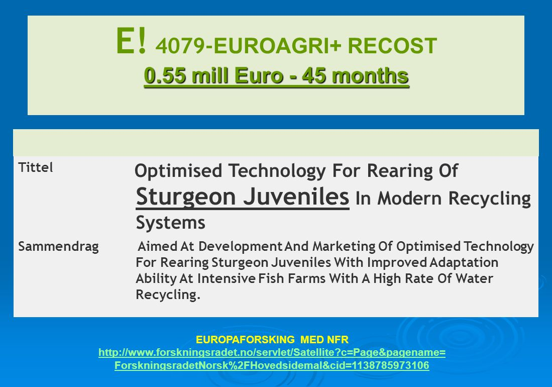 Tittel Optimised Technology For Rearing Of Sturgeon Juveniles In Modern Recycling Systems Sammendrag Aimed At Development And Marketing Of Optimised T
