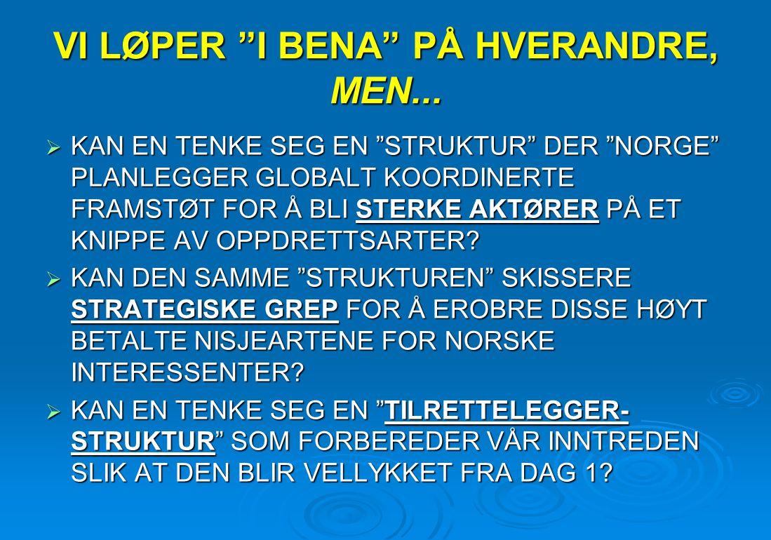 """VI LØPER """"I BENA"""" PÅ HVERANDRE, MEN...  KAN EN TENKE SEG EN """"STRUKTUR"""" DER """"NORGE"""" PLANLEGGER GLOBALT KOORDINERTE FRAMSTØT FOR Å BLI STERKE AKTØRER P"""